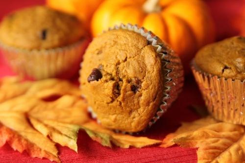 Pumpkin Chocolate Chip Muffins Recipe Photo